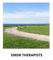 home-emdr-therapists